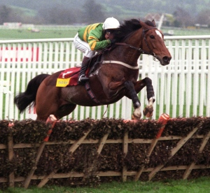 ISTABRAQ and Charlie Swan in full flight at Cheltenham in 1998. Photo and copyright, George Selwyn.