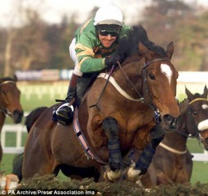 Even at the very beginning, while he was still in training, ISTABRAQ demonstrated his jumping talent.