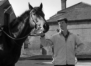 The wonderful Mill Reef and trainer, Ian Balding