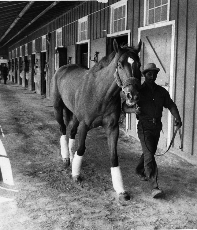 A LIVING FLAME: EDDIE SWEAT And SECRETARIAT