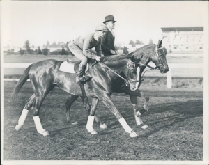 Discovery, a brilliant runner and outstanding broodmare sire, won Horse of the Year in 1935 over Omaha. Discovery appears 4X5X4 in Ruffian's pedigree.