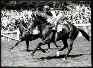NIJINSKY and Lester Piggot just following their win in the 1970 Epsom Derby.