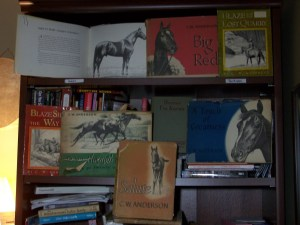 Christmas was filled with horse books....
