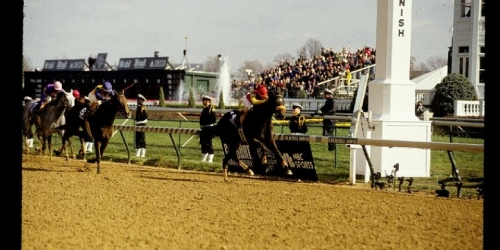 Coming home to win the 1991 BC Distaff.