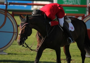 Hickstead and Eric Lamaze were, together with Big Ben and Ian Millar, Canada's most distinguished equestrian partnerships.
