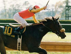 Wilderness Song was a brilliant filly who had the misfortune of being born in the same year as her stable companion, Dance Smartly. Nevertheless, she retired a millionaire and was inducted into the Canadian Racing Hall of Fame in 2008.