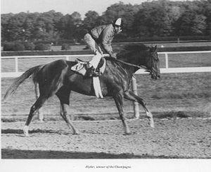 "Was there a horse with a greater heart than Alydar? In the 1970's, most North Americans would have said, ""Absolutely not!"""