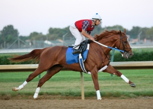 The mighty Curlin, who stands at Lane's End, is sure to leave his mark on the thoroughbreds of the 21st century.