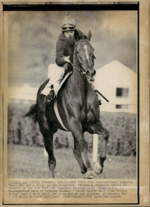 Dahlia never won the Arc, but Nelson Bunker Hunt's filly won the King George VI and Queen Elizabeth (defeating the likes of Roberto), the Benson & Hedges Gold Cup, the Man O' War Stakes and the Washington DC International over a space of two years.