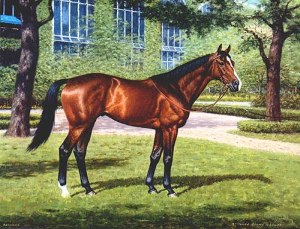 Exceller, a son of Vaguely Noble, was also owned by Nelson Bunker Hunt at this time. He deserves to be remembered for the champion he was and not only his tragic fate.
