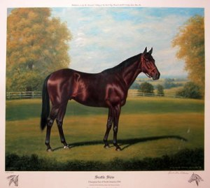 "The great Seattle Slew, 1 of 3 winners of the Triple Crown in the 1970's, pictured here by Richard Stone Reeves in ""Decade of Champions."""