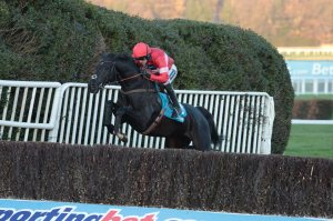 Sanctuaire had given it his all in the Tingle Creek, setting blistering fractions most of the way.