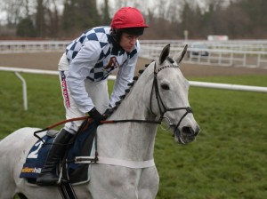 The beautiful Simonsig, a grey thoroughbred, is the same age as Sprinter Sacre. Under Henderson and Gareghty's tutelage, he has won