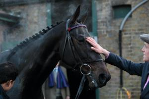 Just after winning the Tingle Creek, the champ gets a pat from exercise rider, Nico