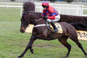 Getting the job done: Sprinter Sacre and Barry Geraghty sprint away from a jump. Photo and copyright, Toby Connors.
