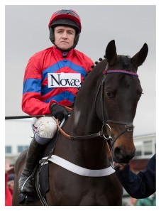 Sprinter Sacre looking to bring his fans to their feet once again. Photo and copyright, Toby Connors.