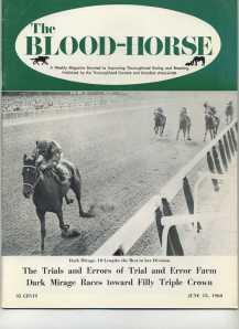 DARK MIRAGE_BLOOD-HORSE