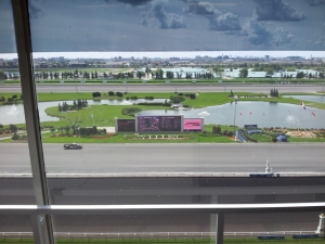 The sumptuous infield at Woodbine, viewed from the stands.