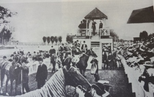 Horses at Old Woodbine gather near the starter's stand, circa