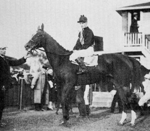 Joseph E. Seagram's YOUNG KITTY, the 1928 winner of the King's Plate.