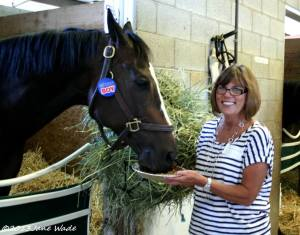 Stephanie helping KINSALE KING enjoy his 8th birthday at the O'Callaghan stable.