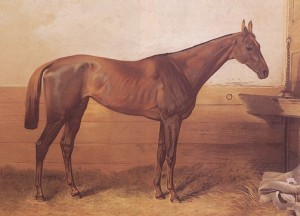 A popular, though less-than-flattering, painting of Kincsem during her racing years.