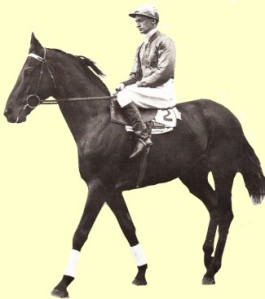 The handsome NIGHTMARCH was another excellent son of NIGHT RAID, defeating PHAR LAP in the 1929 Melbourne Cup.