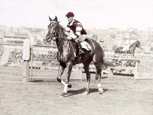 Jim Pike brings PHAR LAP to the winner's circle after their win in the 1929 AJC Derby. Photo and copyright, Racing Museum, Australia