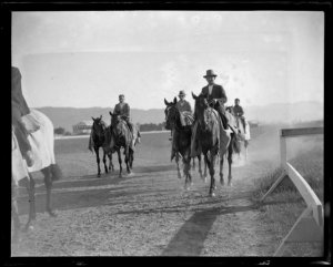 PHAR LAP (foreground) training with other horses from Telford's stable. Photo and Copyright, Museum of New Zealand.