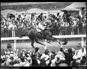 Coming home, Jim Pike hugging his neck. It was Pike's first Melbourne Cup after trying for it 14 times!