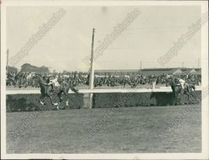 Finally figuring it out: PHAR LAP breaks his maiden at the end of his very first racing season in 1929.