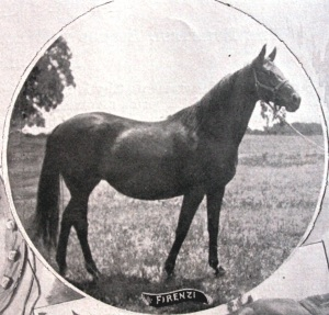 Little FIRENZE (FIRENZI) earned $100,000 before her retirement. Racing in the years following MISS WOODFORD'S retirement, FIRENZE was without question one of the greatest fillies of the nineteenth century in America.
