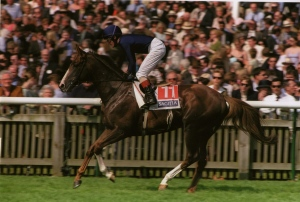 GIANT'S CAUSEWAY as a three year-old, with Mick Kinane up.