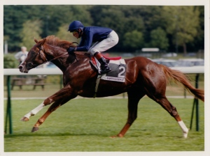 """A very special horse,"" said Aidan O'Brien of GIANT'S CAUSEWAY after he broke his maiden at first asking in 1999. Above, shown winning the Prix Salamandre at Longchamps with Mick Kinane riding that same year."