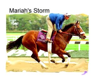 MARIAH'S STORM (1991), the dam of GIANT'S CAUSEWAY had already gained notoriety for her recovery from a fracture to her front left cannon bone in 1993 that should have ended her career.