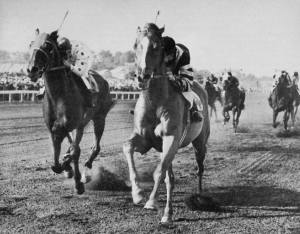 WAR RELIC (inside) shown beating FOXBROUGH in the The chestnut son of MAN O' WAR was thought to be his best son at stud.