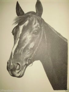 The beautiful EQUIPOISE in a study by C.W. Anderson, who captures both his kind eye and steely head.