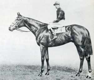 The Aga Khan's BLENHEIM, sire of MAHMOUD.