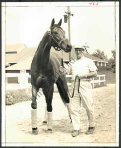 Buckpasser, pictured here in 1966 with trainer   was thought by equine artist Richard Stone Reeves to be the most perfect thoroughbred he had ever seen. Photo and copyright, The Chicago Tribune.