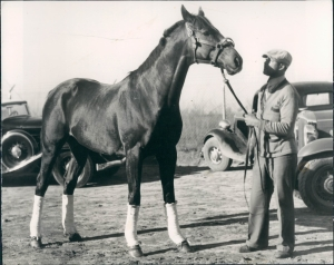 EQUIPOISE was the star of the Handicap Division for three straight years from 1933-1935, winning Horse of the Year each time. Shown here with his lad. Date unknown but likely post-1932. Photo and copyright, The Baltimore Sun.