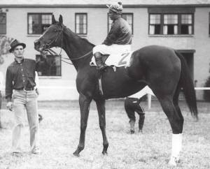 MYRTLEWOOD, a daughter of BLUE LARKSPUR, during her racing days. She would go on to become a foundation mare of the American thoroughbred horse.