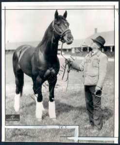 The handsome WITH REGARDS and trainer, TED GRIMES. Photo and copyright, The Baltimore Sun.