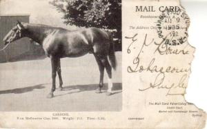 CARBINE depicted on a postcard of the day.