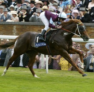 CHOISIR, the sire of OLYMPIC GLORY, shown here winning the Golden Jubilee Stakes at Royal Ascot in 2003. A handsome devil, CHOISIR was as memorable for his headgear as he was for his immense talent.