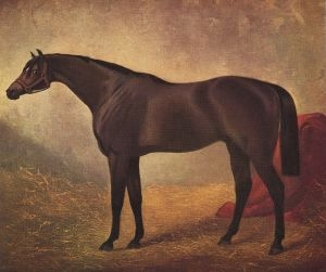 FISHERMAN (1853) was one of the Foundation Sires of the AUS+ NZ thoroughbred. He is depicted here by the great equine artist, Herring.