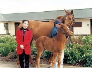 URBAN SEA, herself a winner of the Arc and the dam of GALILEO, SEA THE STARS, MY TYPHOON and BLACK SAM BELLAMY among other champion progeny with her 1997 filly foal by LAMMTARRA who was named MELIKAH. Owned by Darley, MELIKAH MELIKAH is the dam of champion MASTERSTROKE. Like many of LAMMTARRA'S daughters, who are sought after, MELIKAH brings her sire's brilliance to her offspring.