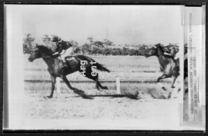 BERNBOROUGH shown winning the Spring Handicap at Toowoomba in 1944, shortly before he began to develop foot problems and before his sale to Romano in 1945.