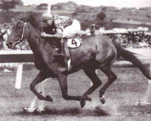 FLIGHT was one of the greatest mares ever to race in Australia. Although she would succumb to birthing complications in 1953, a daughter produced the champion SKYLINE.