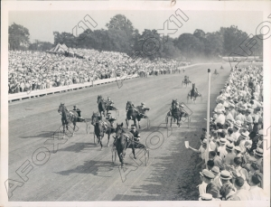 ROSALIND the 1936 Hambletonian with BEN WHITE at the reins. In the photo, you can see the crowd's reaction as the Whites' champion filly nears the wire.