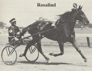 "The ""gift filly"" -- ROSALIND and BEN WHITE."